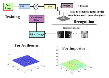Correlation Filter Pattern Recognition for Biometric Verification and Security